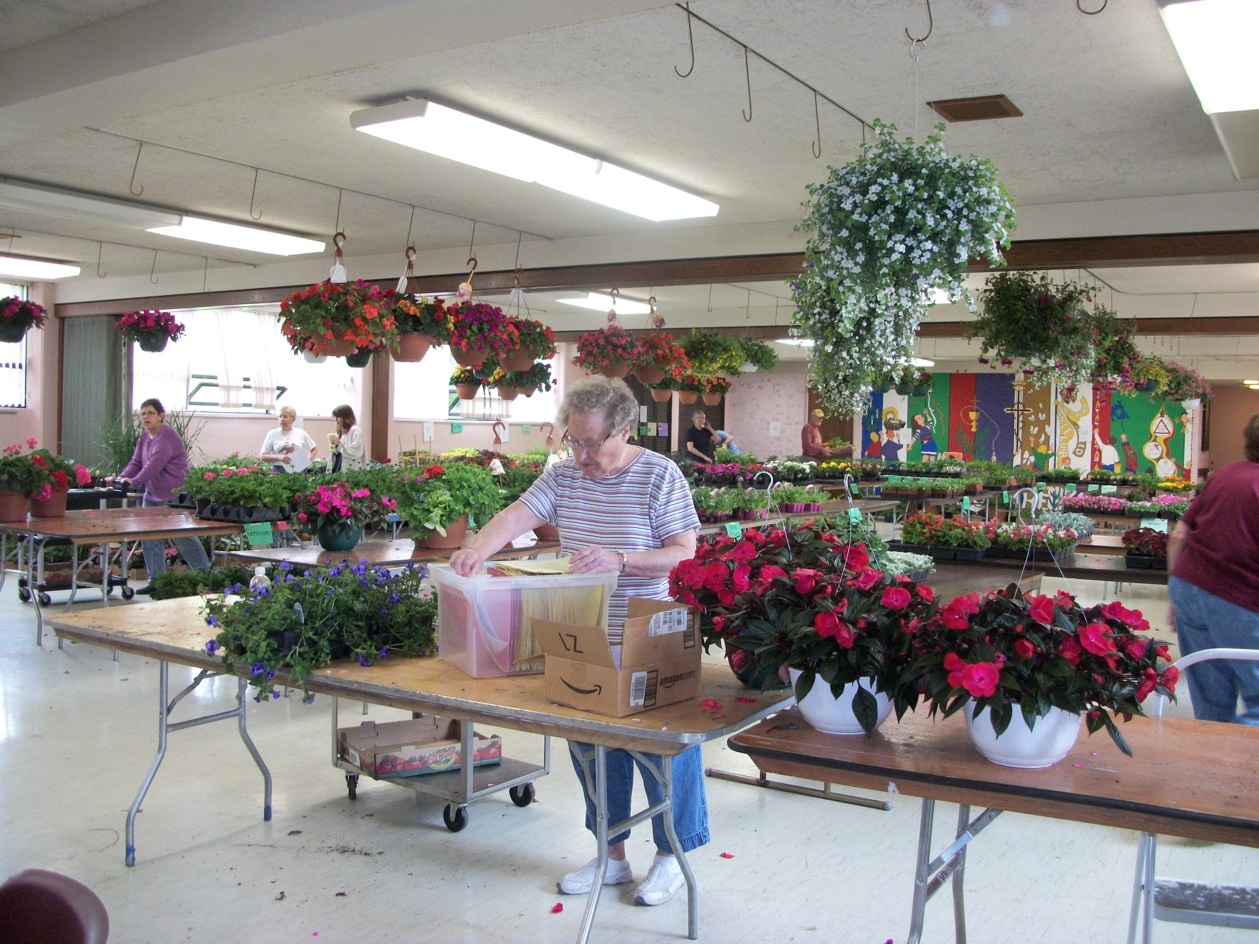 Betty plant sale May 2012 (2).jpg