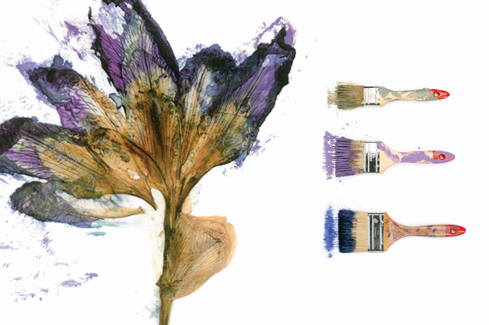 21st-century-color-Vanessa-Batut-1.jpg