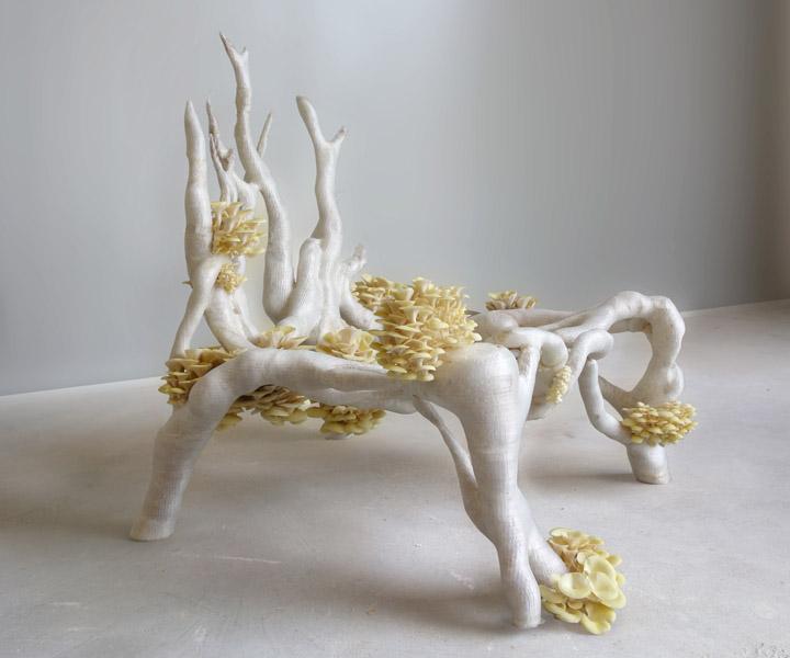 myceliumchair.jpg