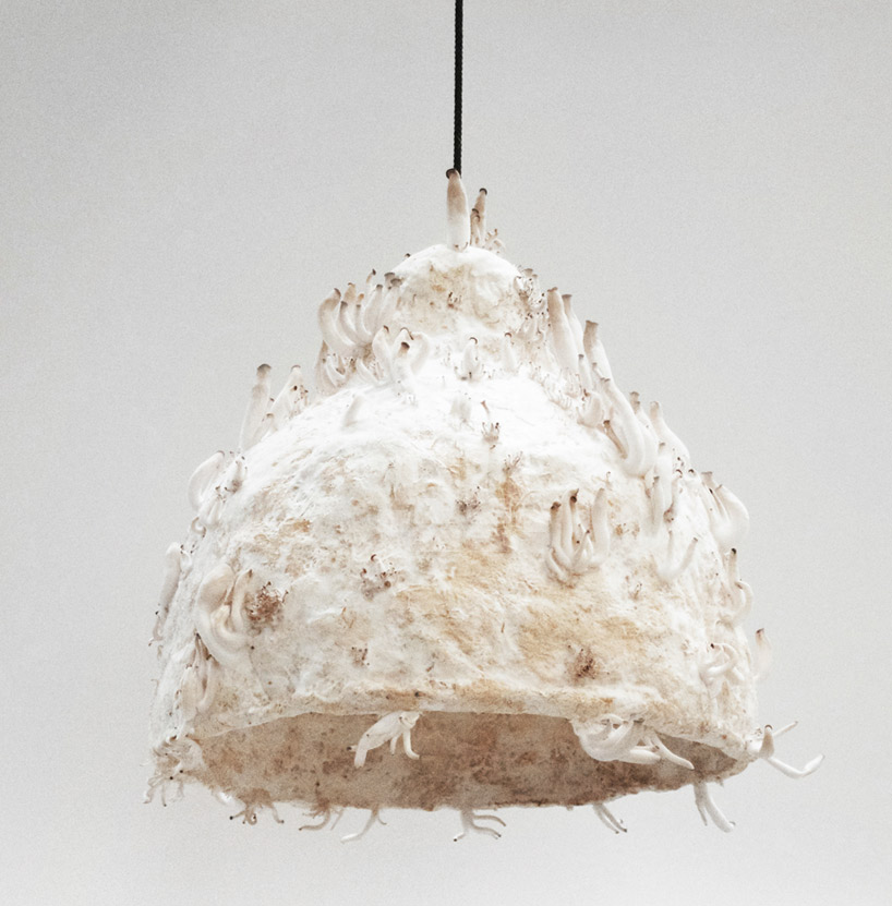 jonas-edvard-MYX-lamp-mushroom-designboom-02.jpg