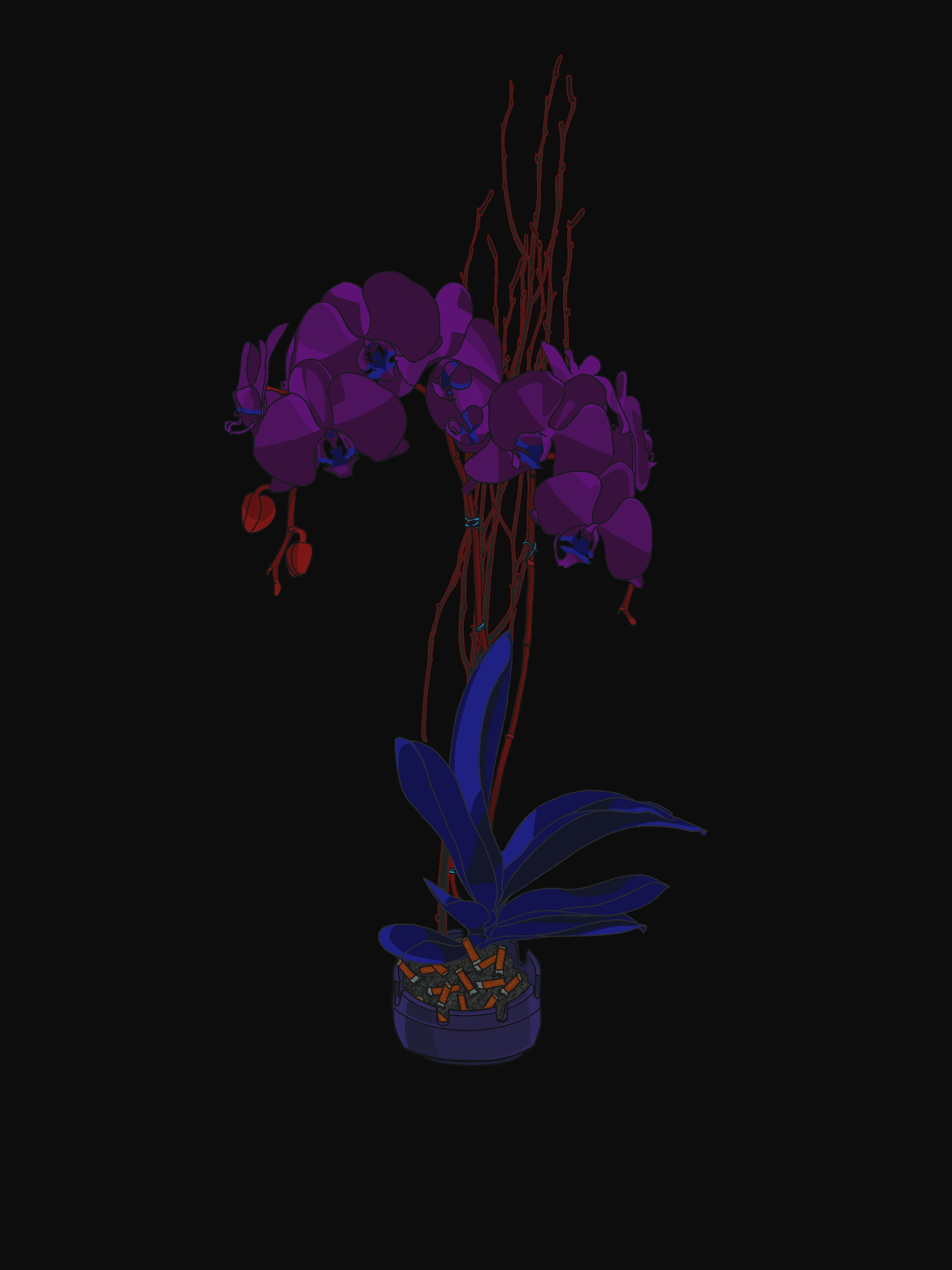 Orchid_Collapsed.png