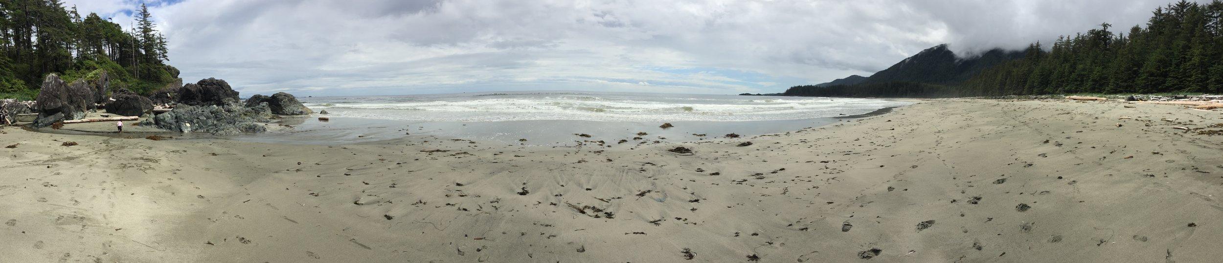 Brooks Peninsula: Desolate beach