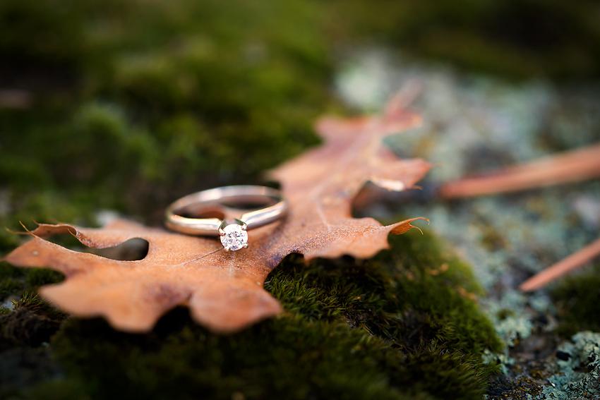 Mountain-Engagement-Photos (28)