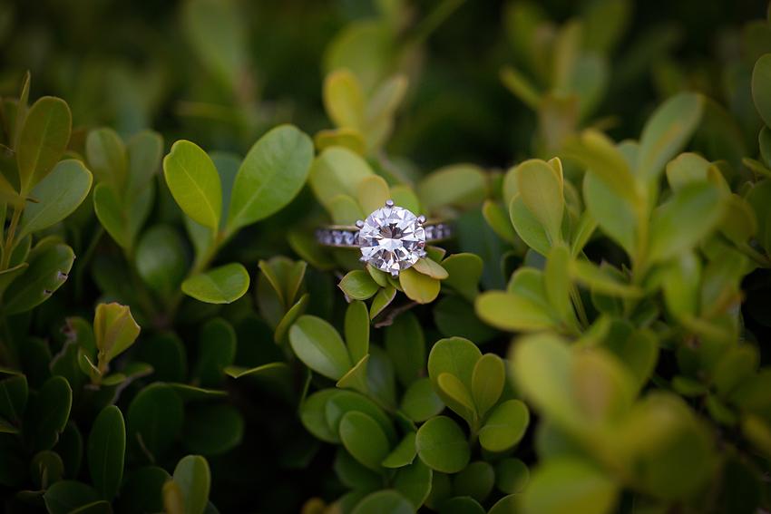 Balboa-Park-Engagement-Photos (30)