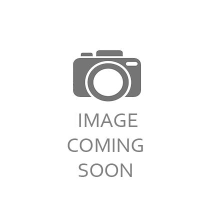 PISTACHIO APPLE STRUDEL SLICE - $5
