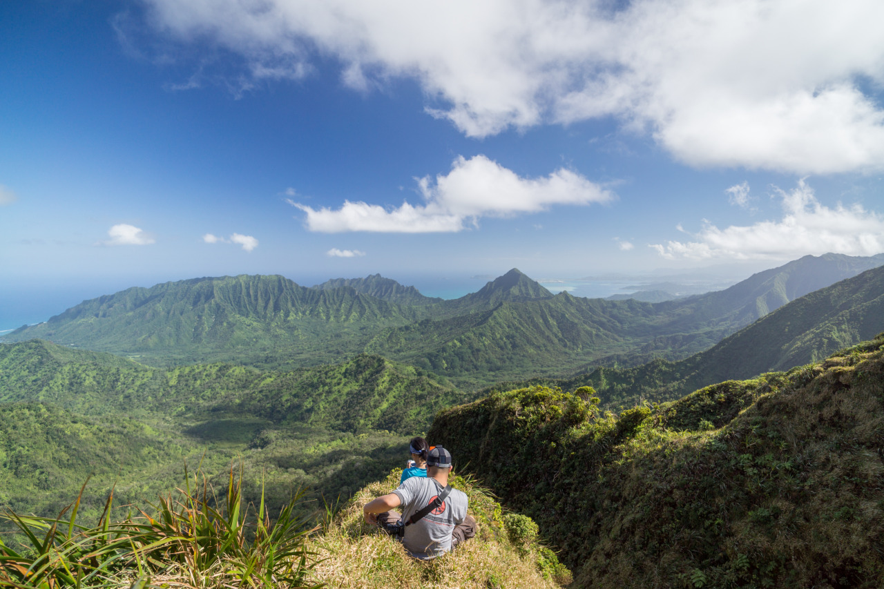 luzod-design-co-hawaii-hike-punaluu-valley.jpg