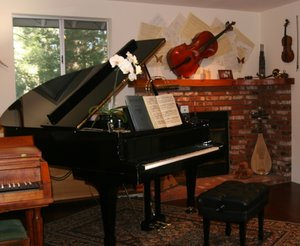 The studio is filled with pianos, early keyboard instruments built by Chet Noll.