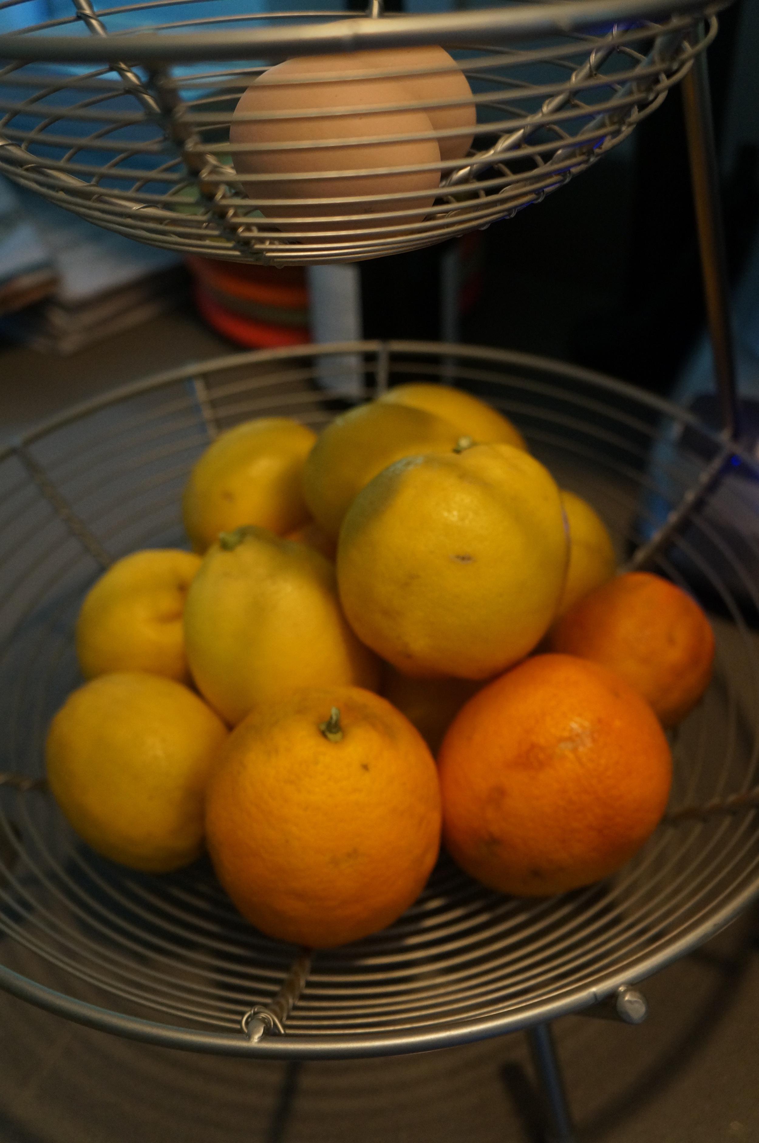 lemons .jpg