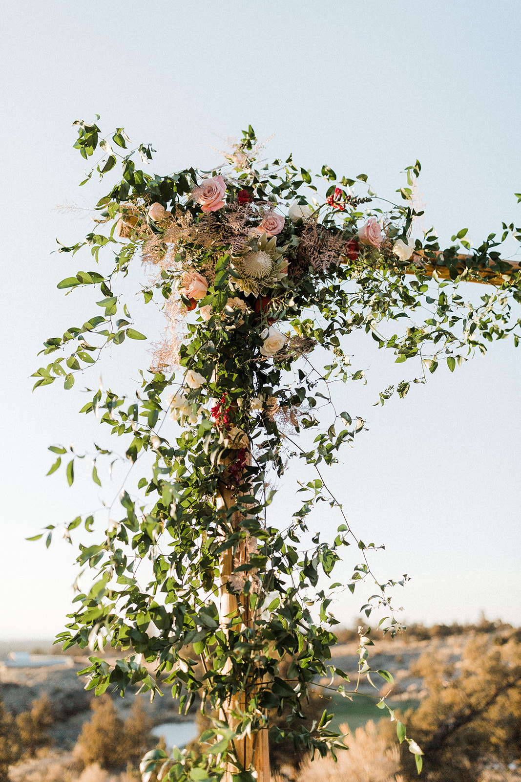 Jen_Ian-Wedding-Gallivan-Photo-464.jpg