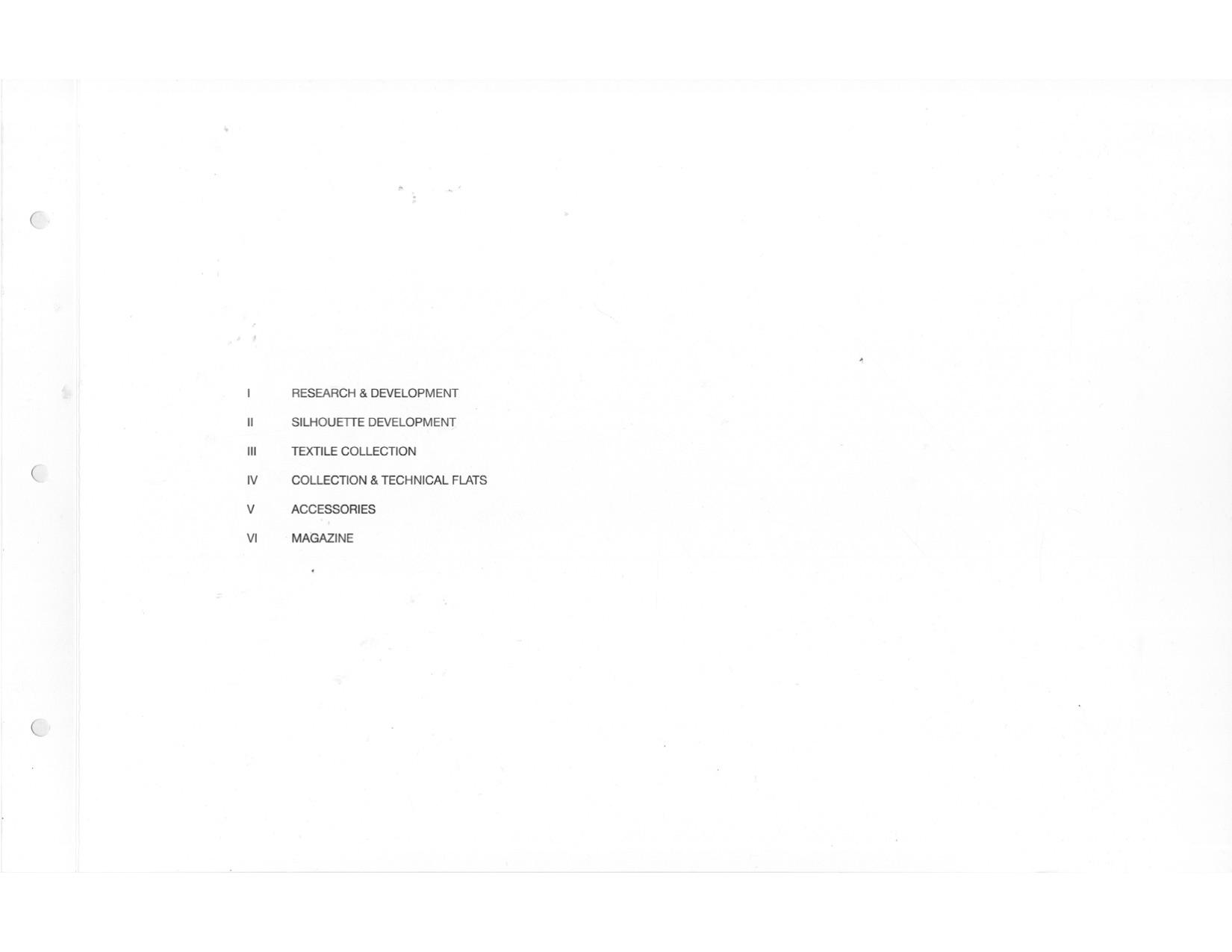ANNE LI portfolio for THOM.jpg