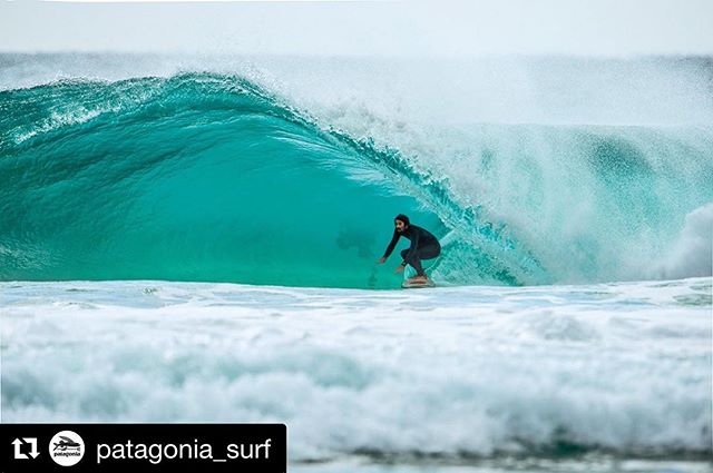 Rasta soul-surfing on a TreeTech RTT #Repost @patagonia_surf ・・・ When triangles go square: Dave Rastovich taps into a sustainable resource while filming Never Town. Photo: @tedgrambeau . . . . . . . . #garymcneillconcepts #rtt #rastatorustwin #torustwin #twinfin #treetech #flaxcloth #ecosurfboard #recycledfoam #makingthingsbetter #newsurfboard #surfboards #surfing #surf #surfinglife #surfingtasmania #surftrip #surftripweapon #stoked #designedinaustralia #madeintheusa #madeincalifornia #avaiableinpatagoniastores #patagoniasurf #patagonia