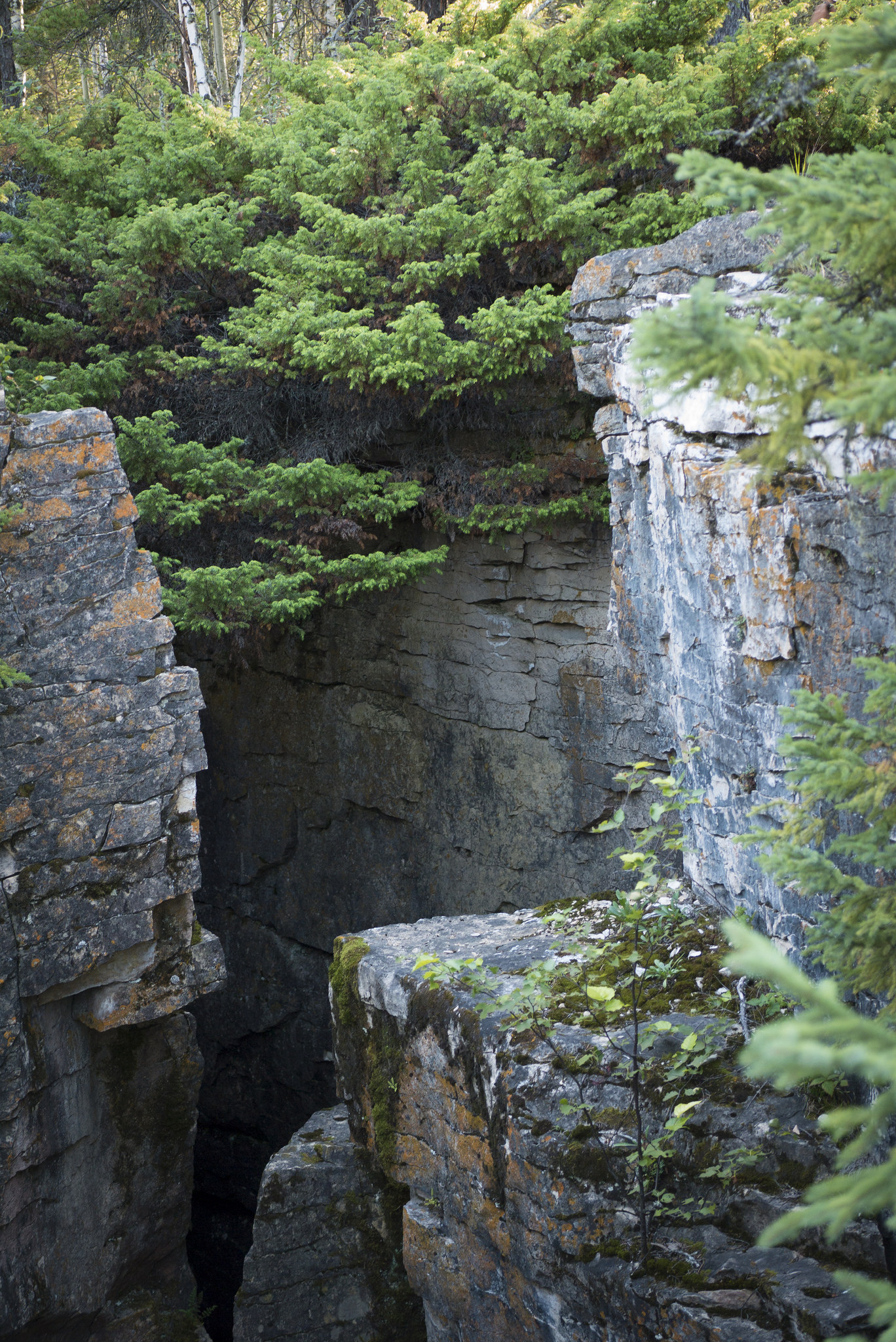 The Limestone Crevices of Amisk Lake are frighteningly steep.