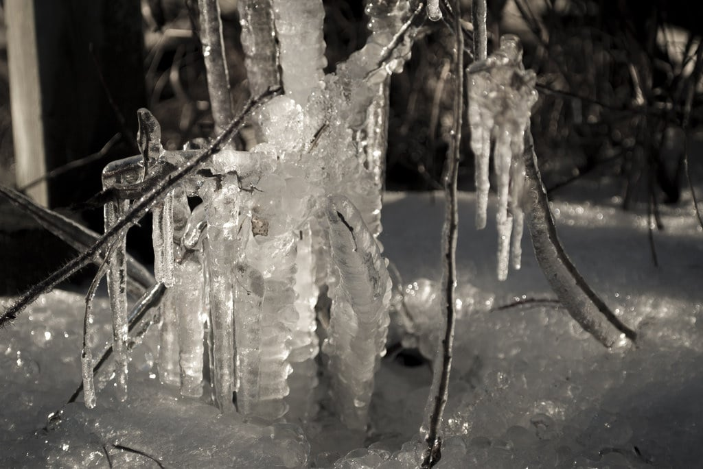 Natural ice sculpture made from water melting off the roof of Moose Lake Shelter.