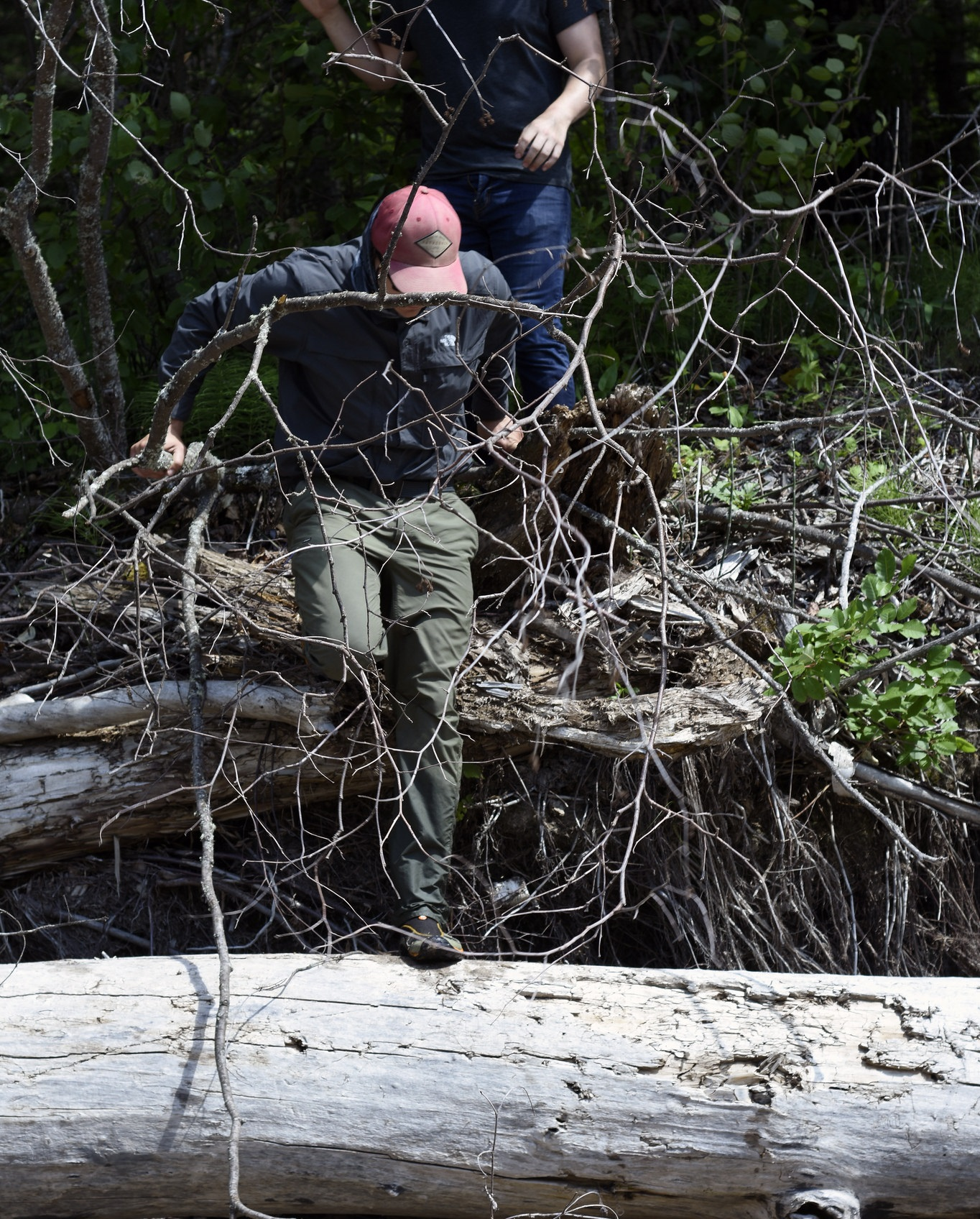 Leading the hike over fallen trees and jagged branches.