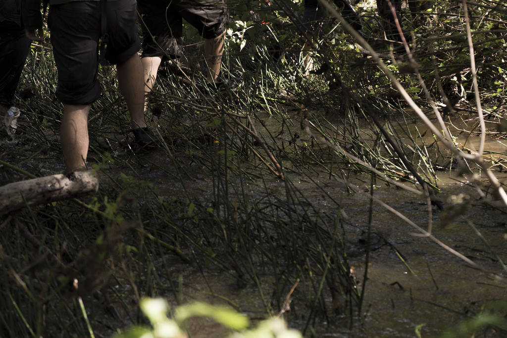 Walking through a flooded forest in Pasquia's newest river section. (Photo: Goodson)