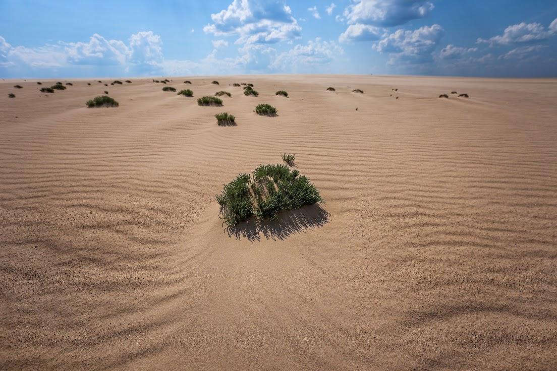 Sandbars
