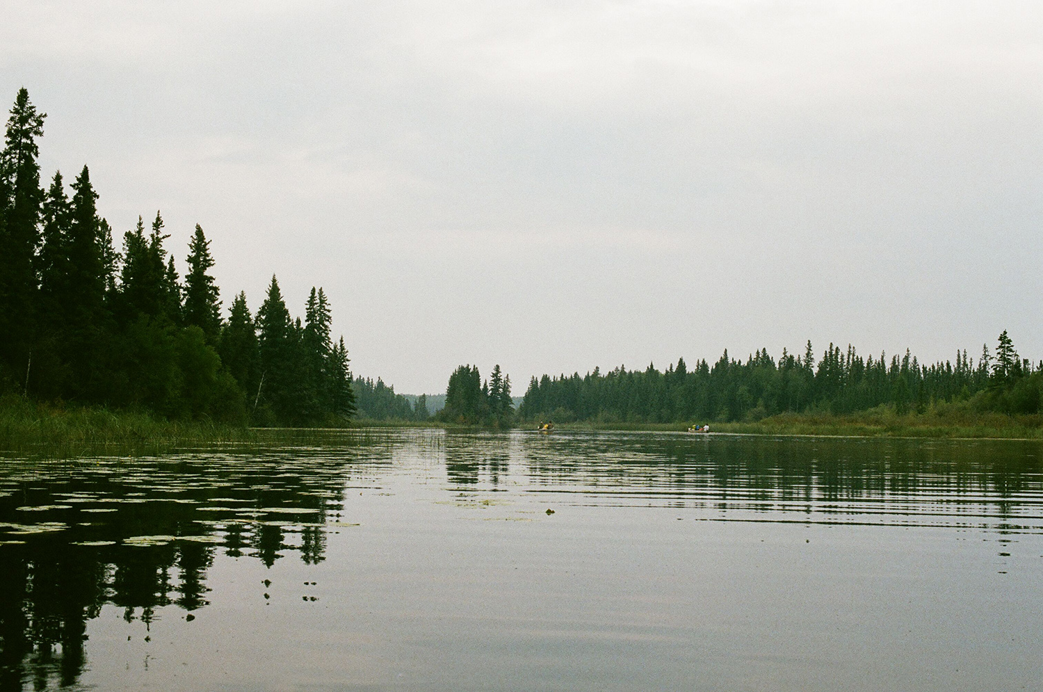 Paddling through a calm channel (Hootz)