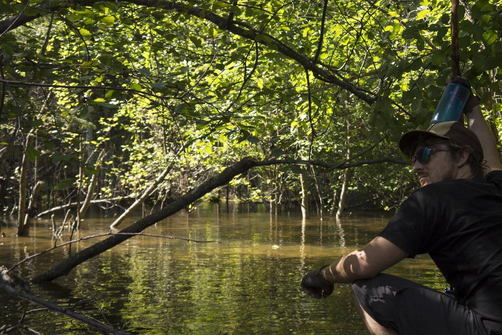 Mangrove Man (Goodson)