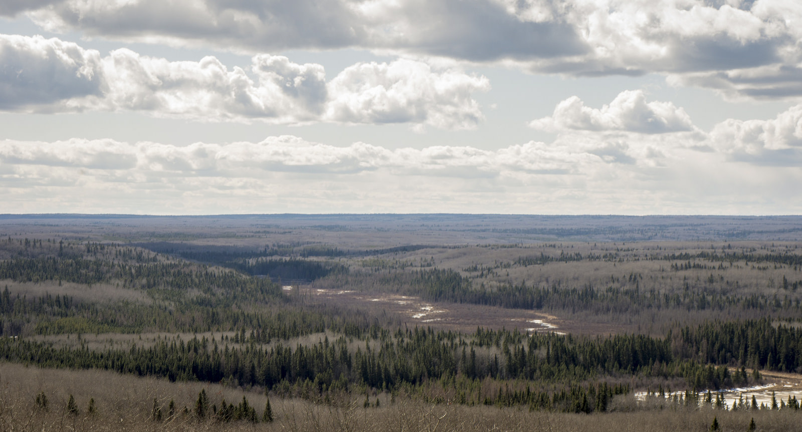View of Beartrap Creek from the Height-of-Land Lookout Tower in early spring, Prince Albert National Park. This marks a boundary where all south-flowing waters enter the Saskatchewan River, and all north-flowing waters enter the Churchill River.
