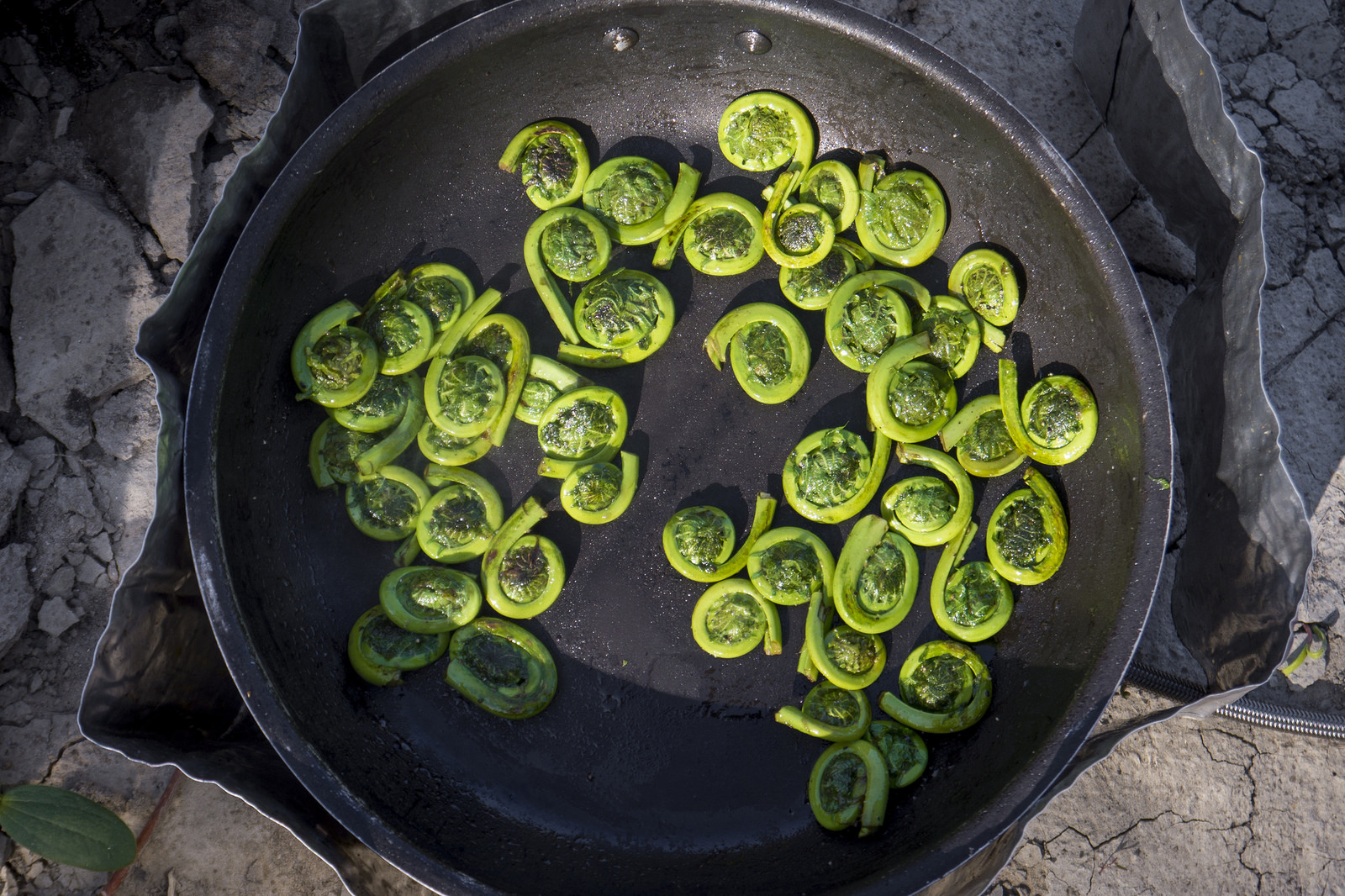 Fried fiddleheads (Goodson)