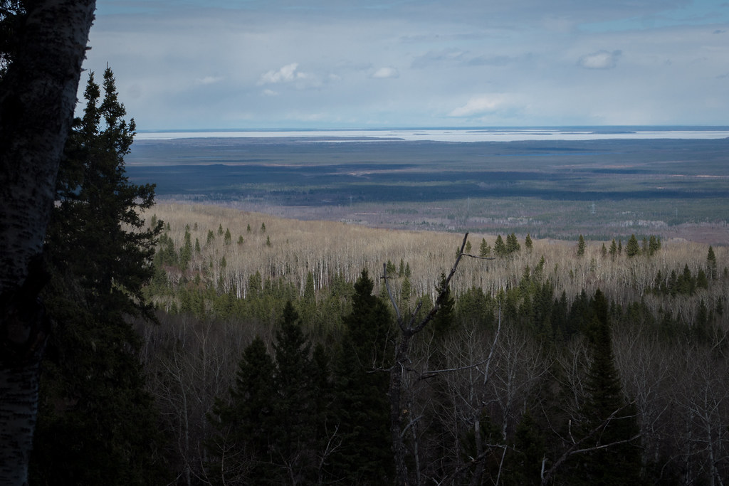 Vantage point of the Manitoba lowlands from the northeast ridge of the Bell River Canyon (Goodson)