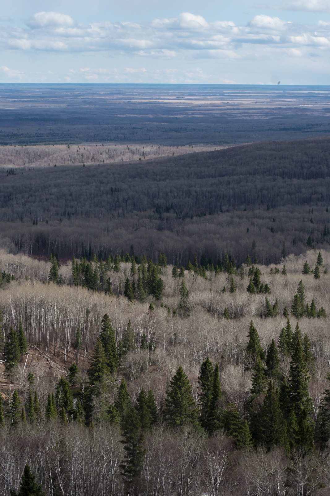 An expansive view of the Bell River valley leading down to the Manitoba Lowlands. The Duck Mountains' shadow can be seen 70 km away. (Goodson)
