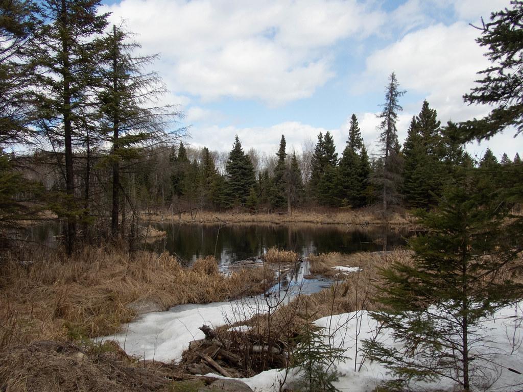 Thawed pond (Hootz)