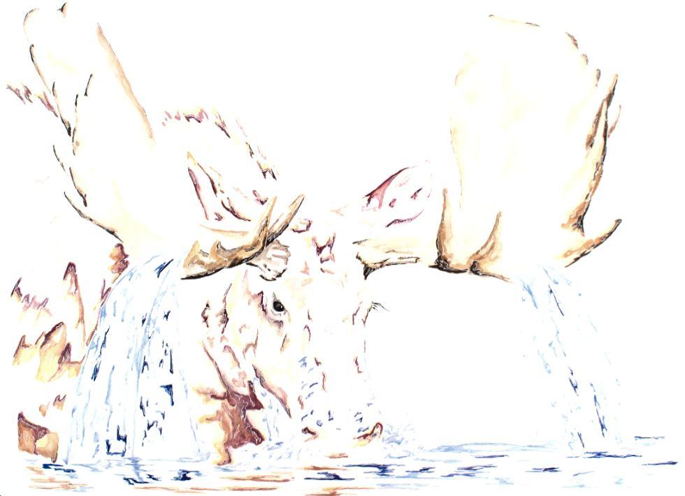 Moose Drool artwork art brad wilson artist watercolor ink splatter abstract colorful painting bradley wilson studios drinking water horns .jpg
