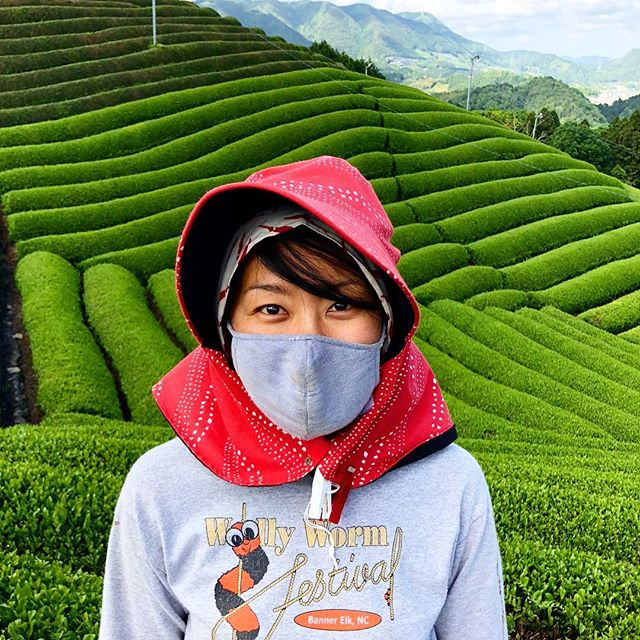 Matcha green tea farmer. #matcha #greentea #Uji#Kyoto #photography #Japan