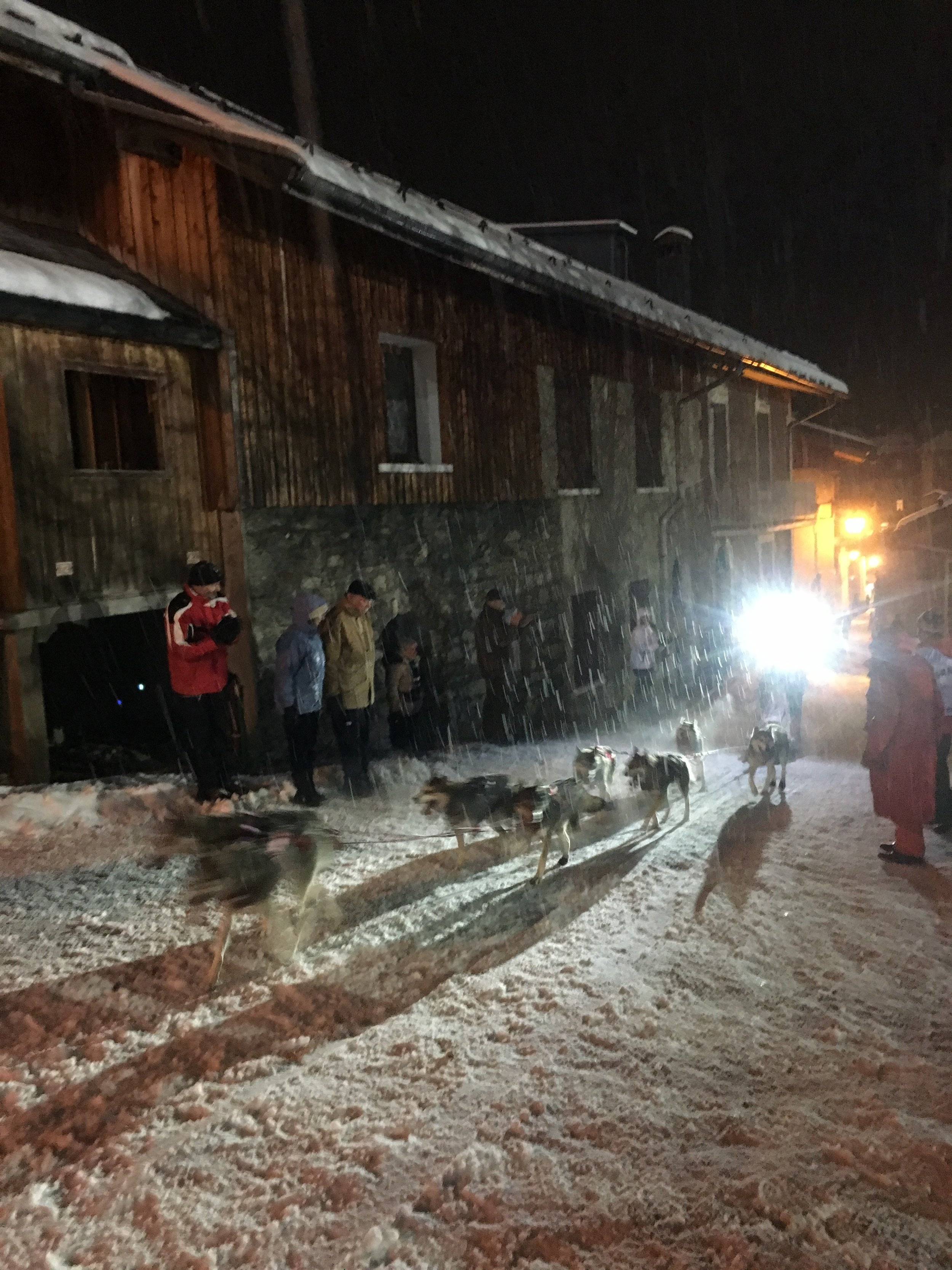 Dog team running through the pouring rain in Pralognan la Vanoise.