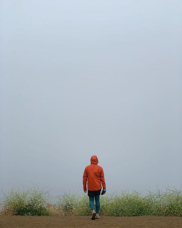 Into the Mystic 🌫🌼🌧 #MDW #LA #MayGrey #hike #rain #SundayFunDay #nofilter