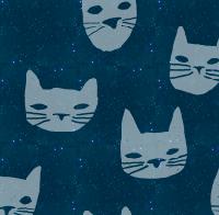 KittyKittyNight.png