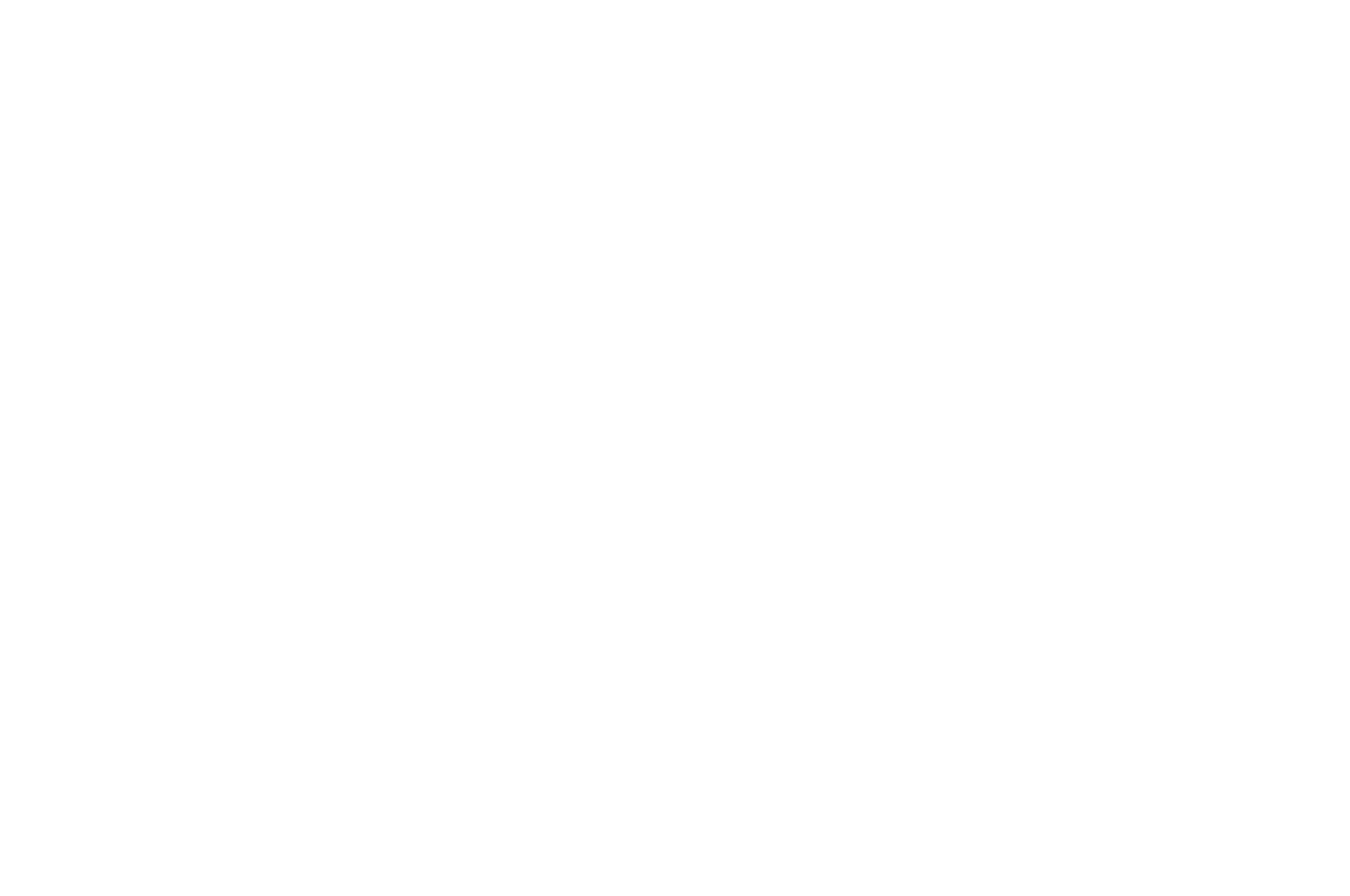 OFFICIAL SELECTION - CASCADIA International Womens Film Festival - 2018.png
