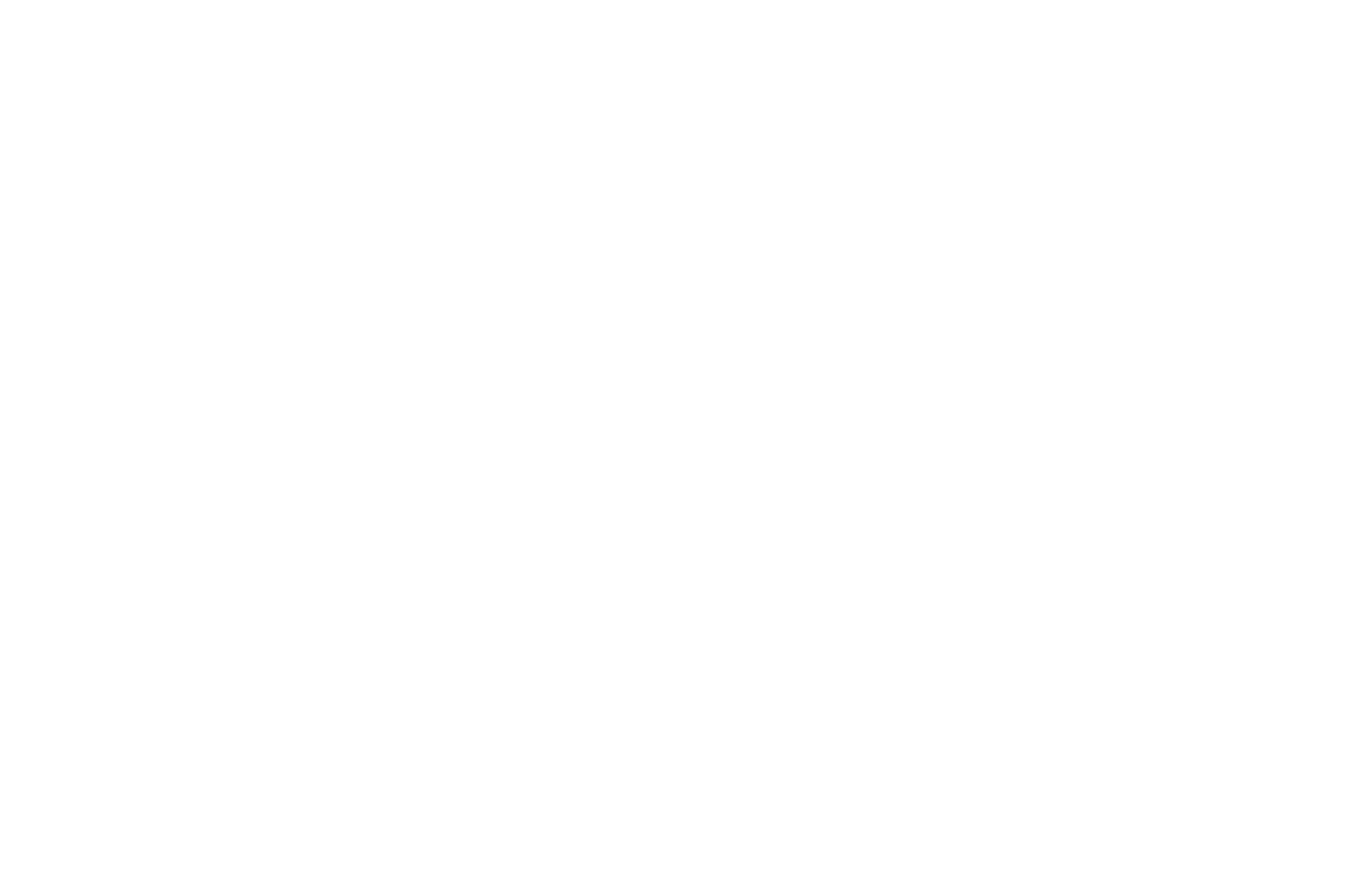 OFFICIAL SELECTION - Nevada Womens Film Festival - 2018-2.png