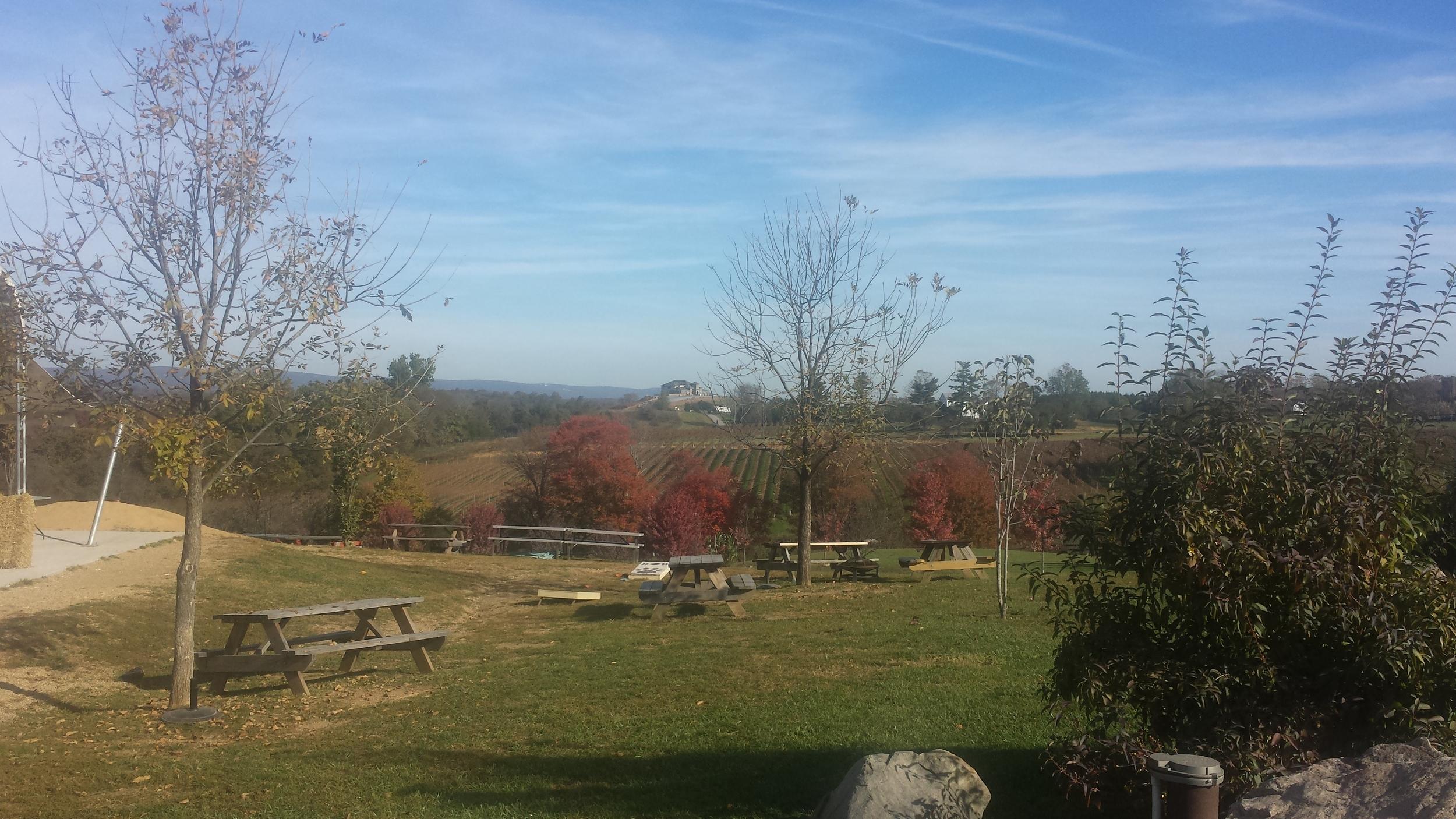 View from  Barrel Oak Winery
