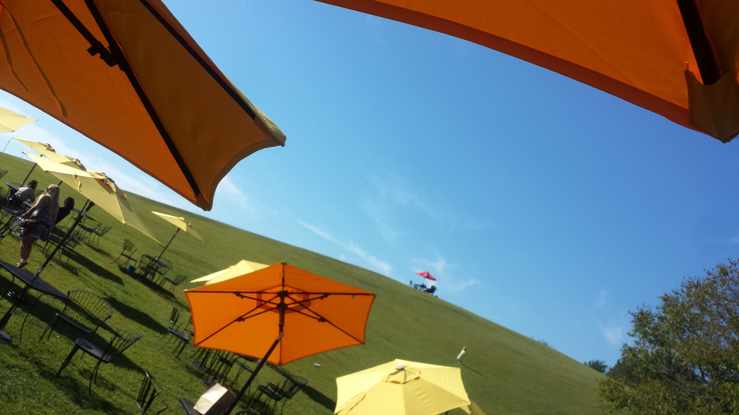 Table in the sky at  Three Fox Vineyards