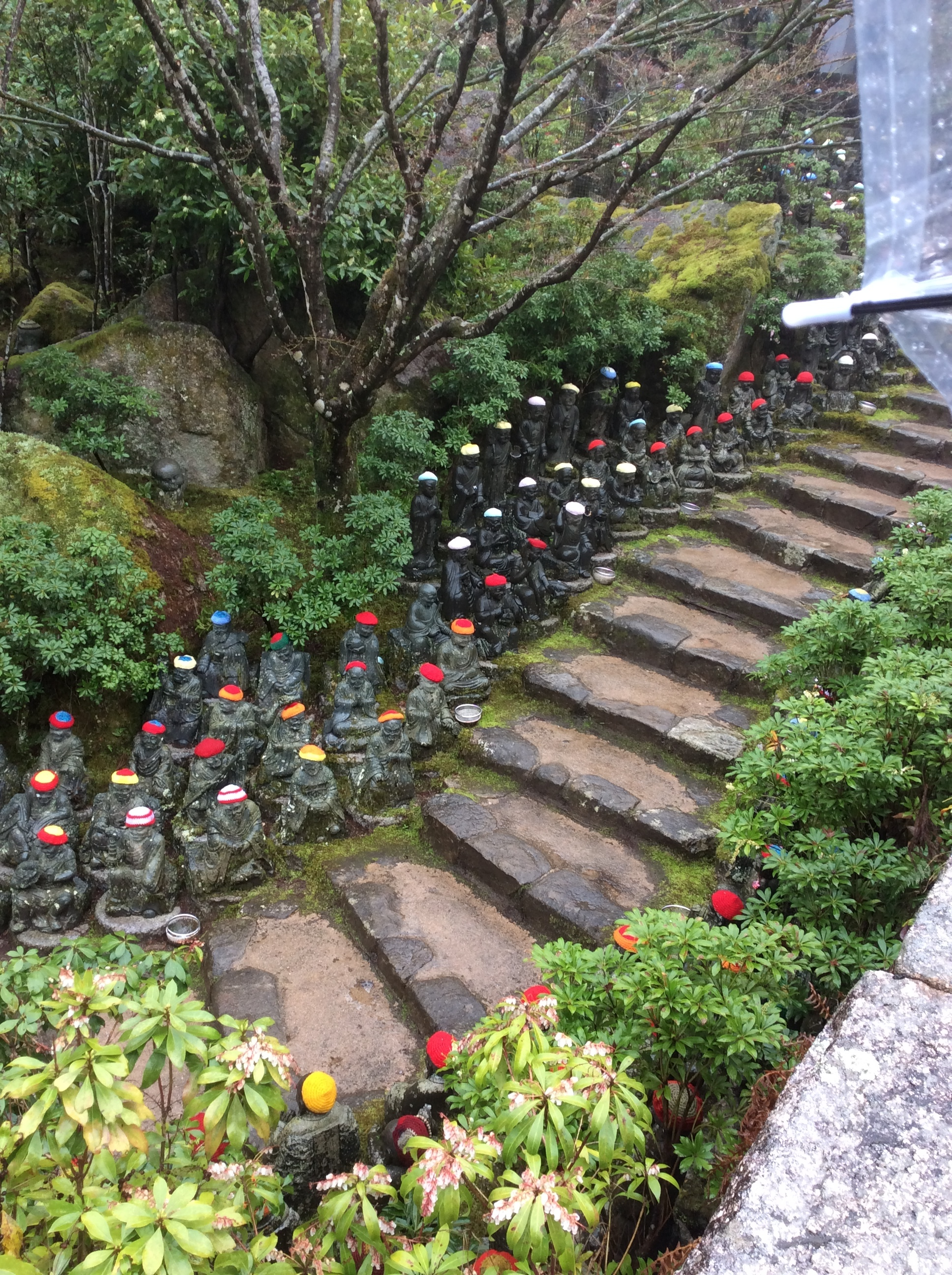 Steps to  Daisho- In .