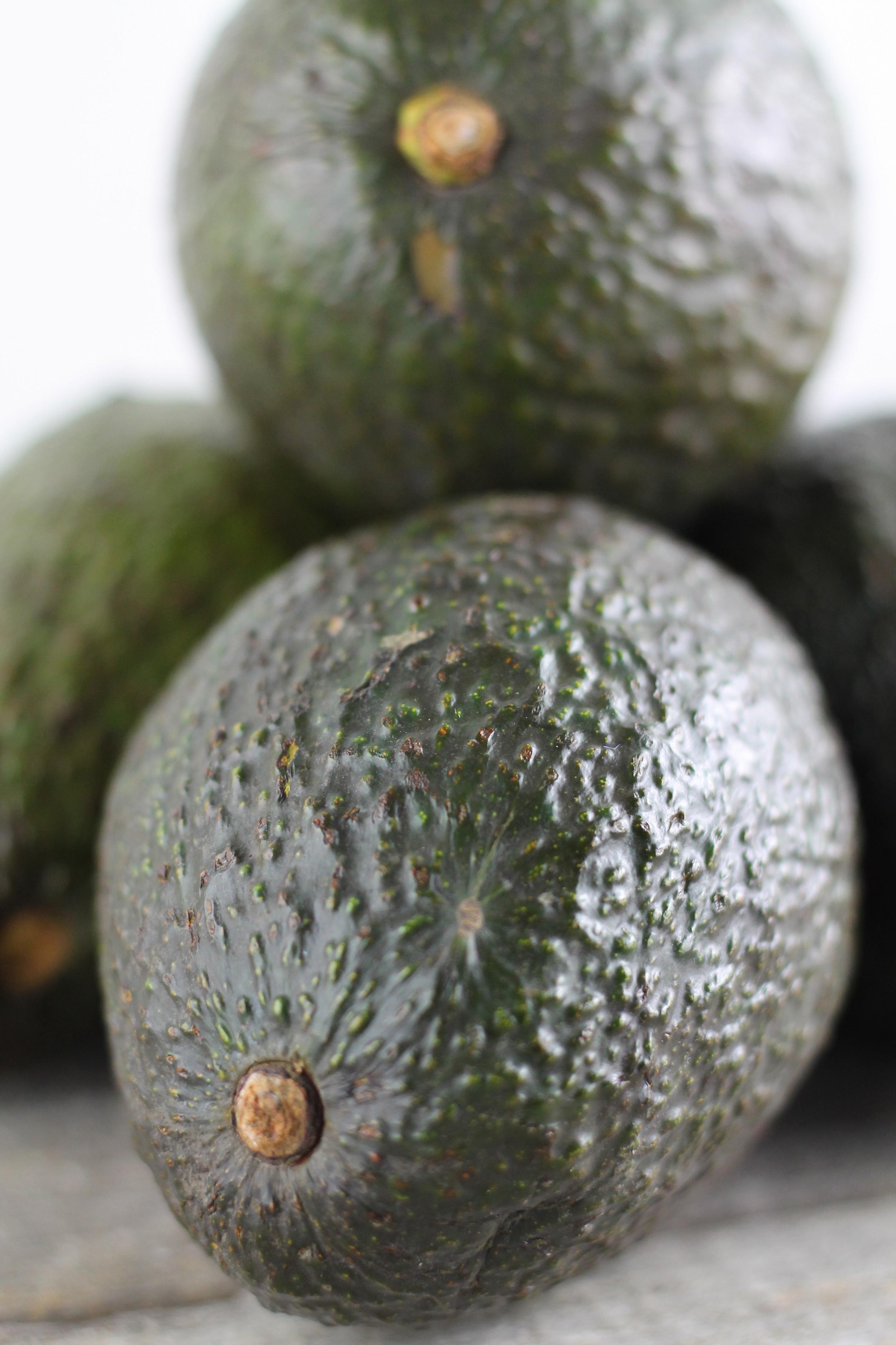 Avocados are healthy, holiday snacks