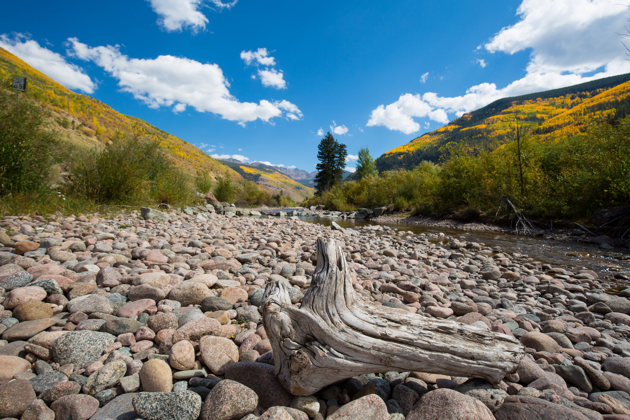 Aspen, Colorado, Fall Leaves, Fall Colors, Denver To Moab, Road Trip, Define Fettle