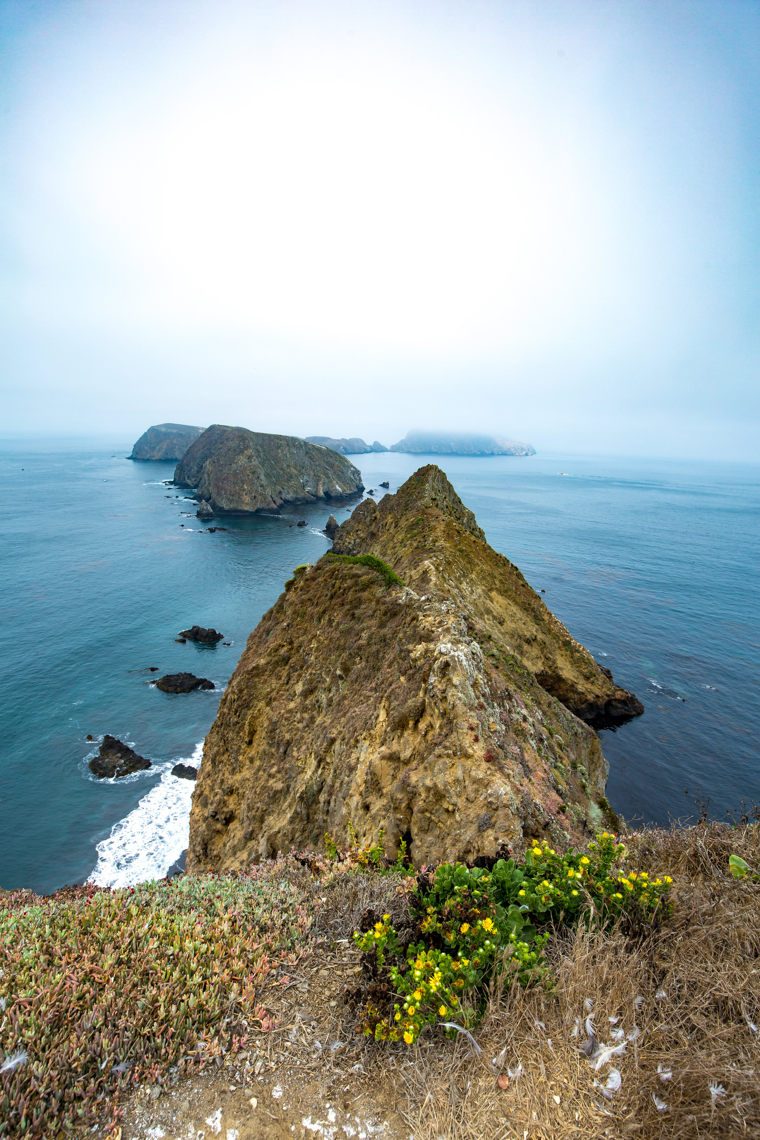 Channel Islands, Channel Islands National Park, Anacapa Island, Island Packers, Inspiration Point