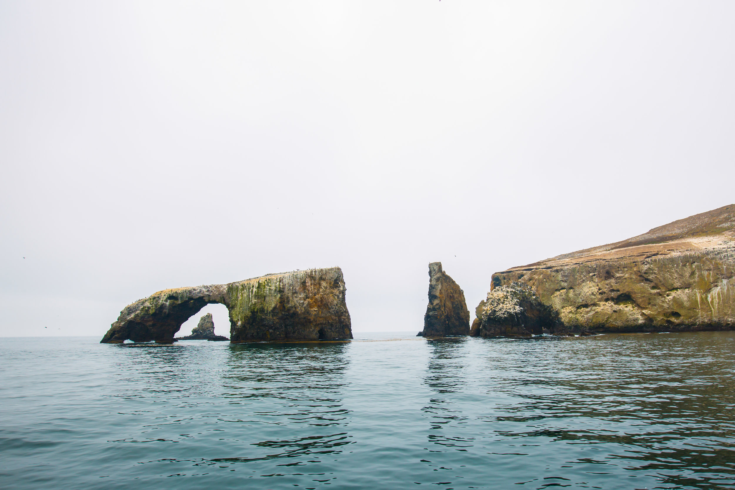 Channel Islands National Park, Anacapa Island, Arch Rock, Island Packers, California National Parks