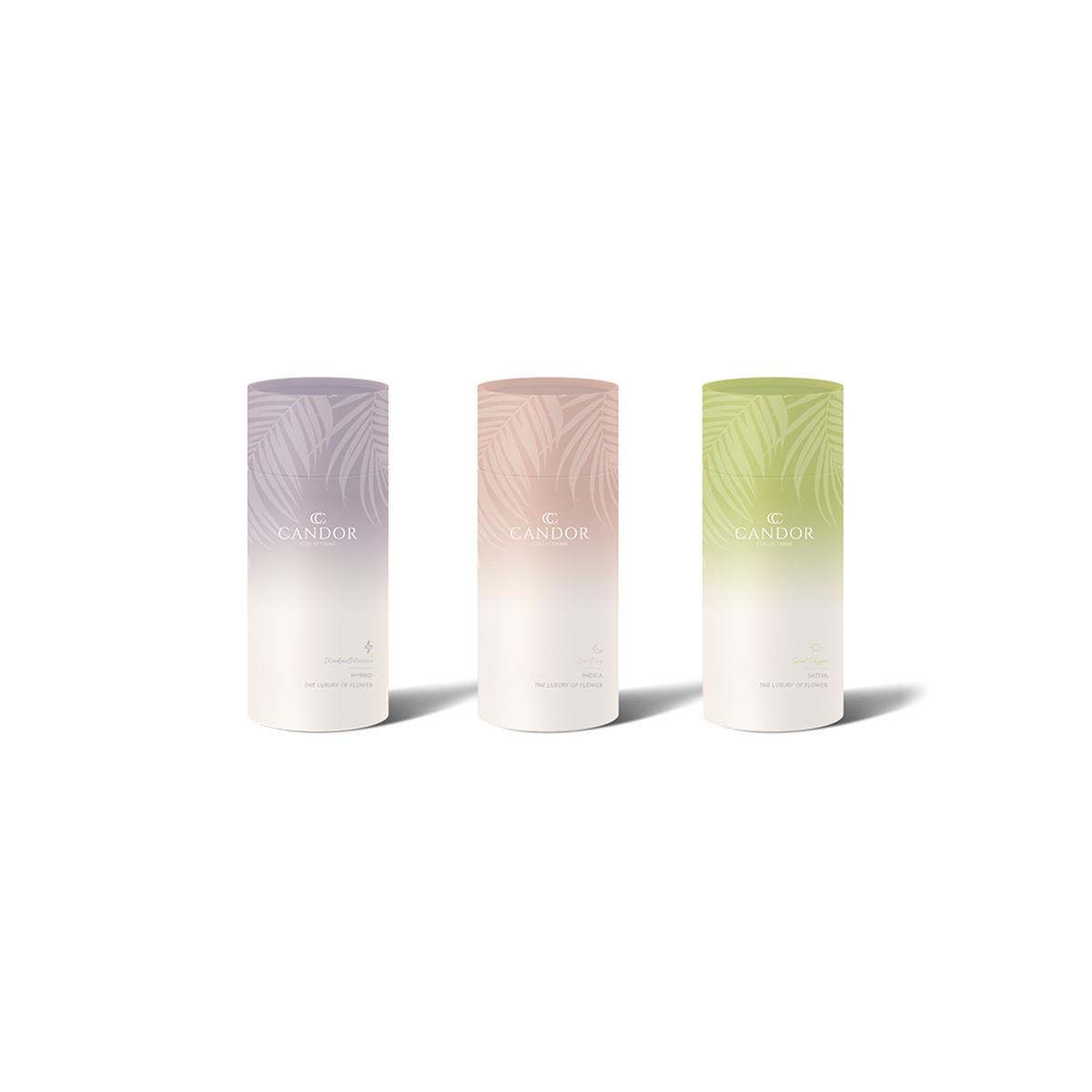 Candor Packaging Design.png