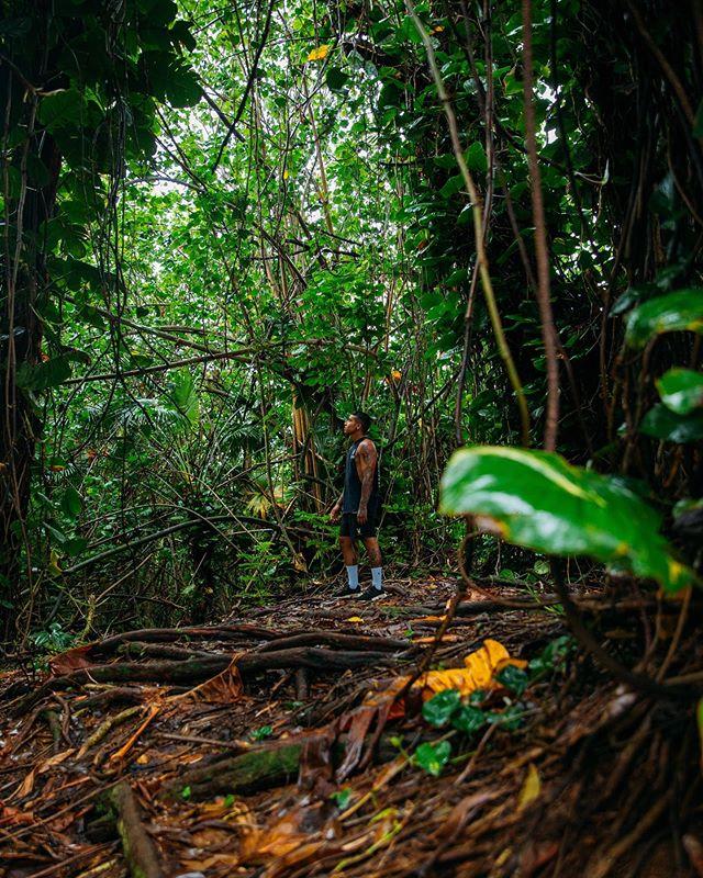 Exploring Kauai 👀🌿