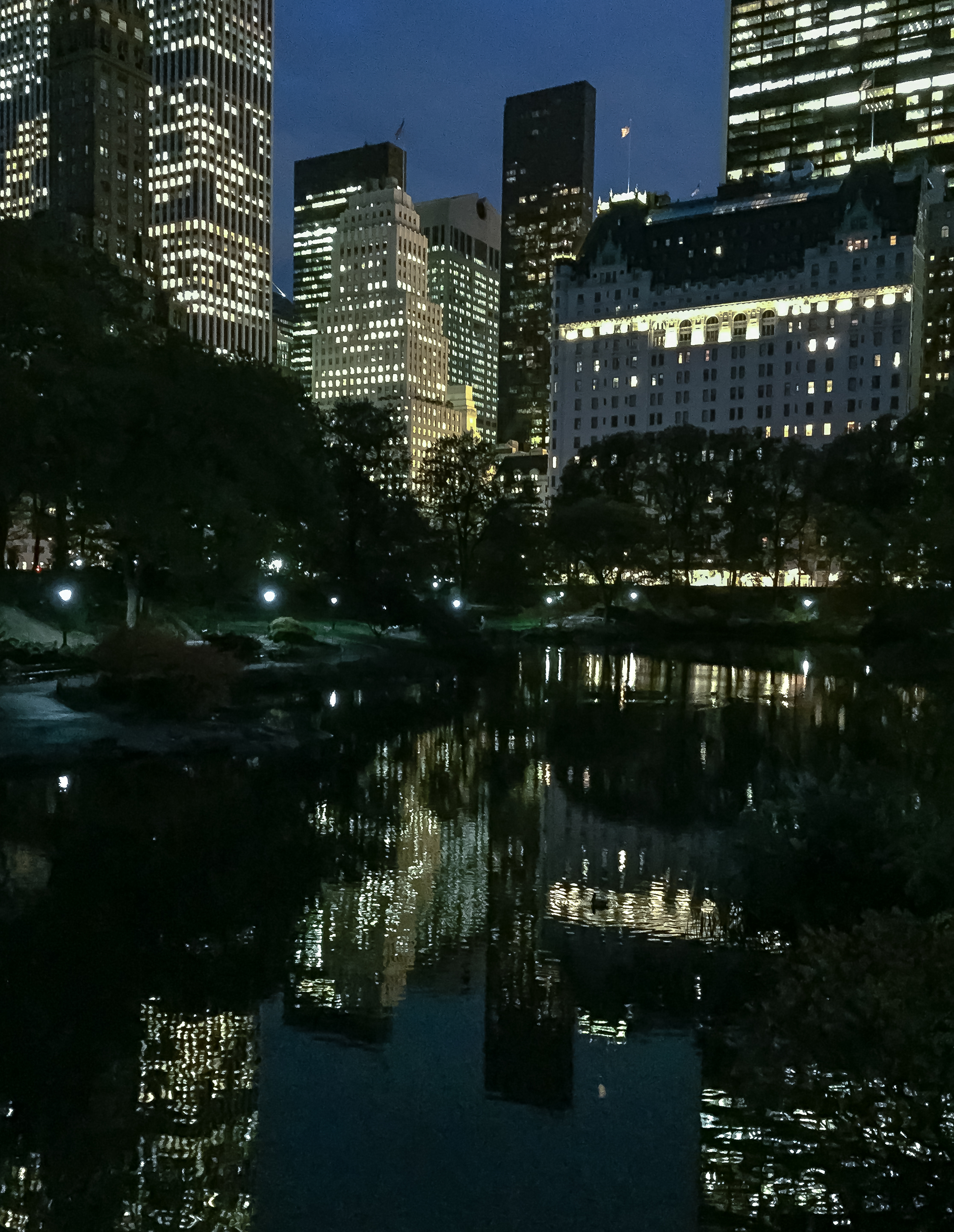 Night Reflections, Central Park