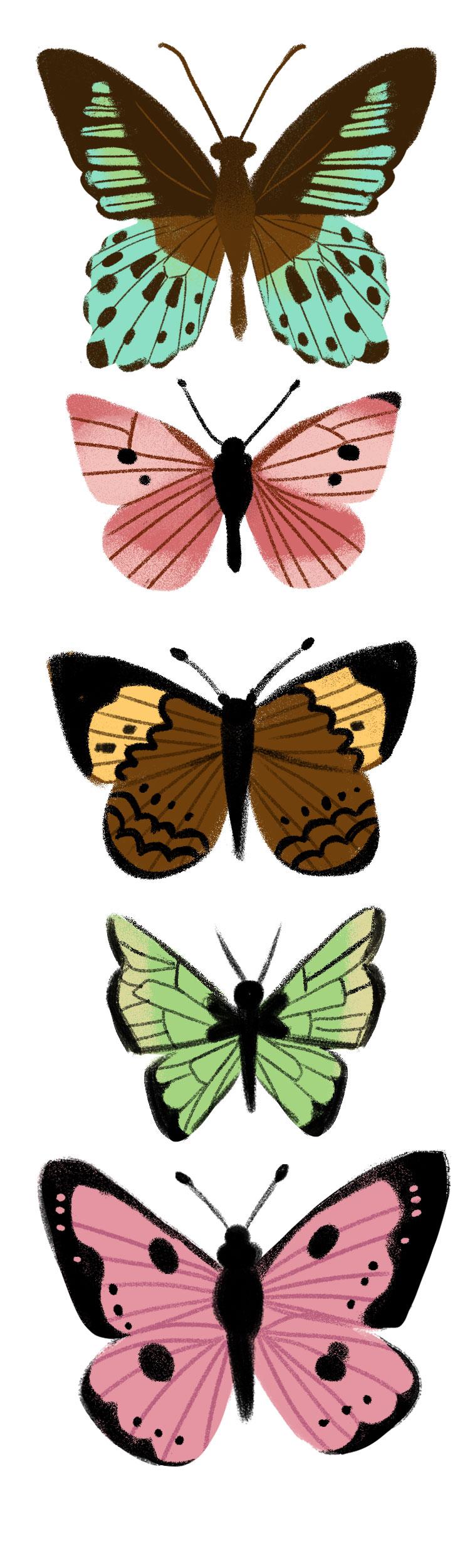 PressPageButterflies.jpg