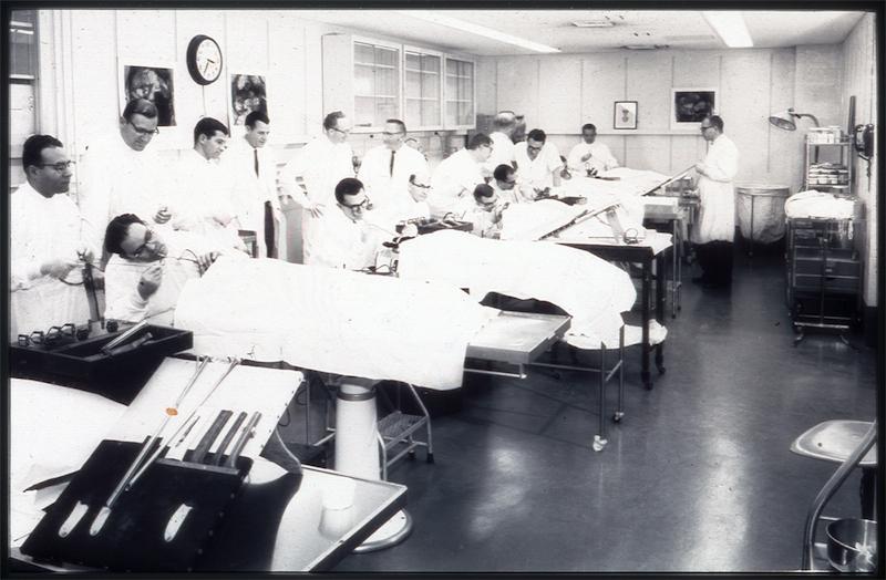 Dog lab, bronchoscopy course, Jefferson.