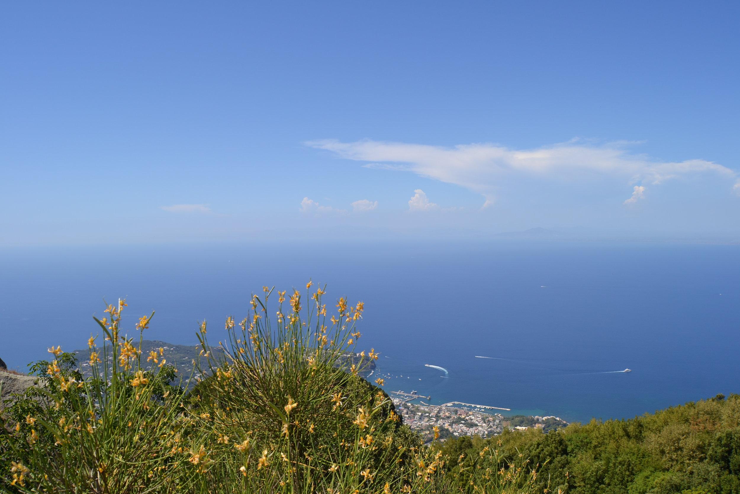 Kukkia merimaisemalla Ischian saarella