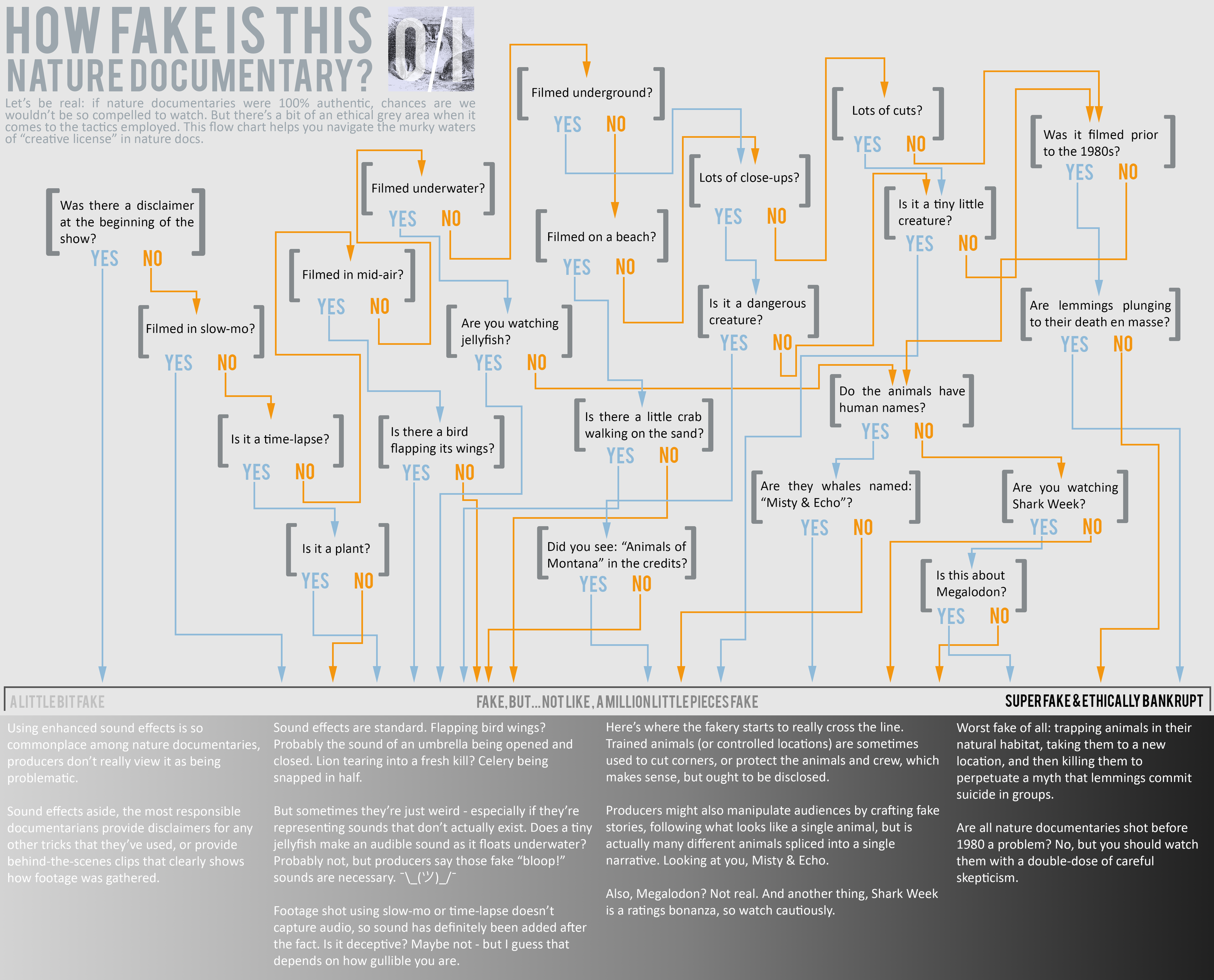 Here's a handy flow chart to help you watch documentaries with a careful eye. | credit: logan shannon