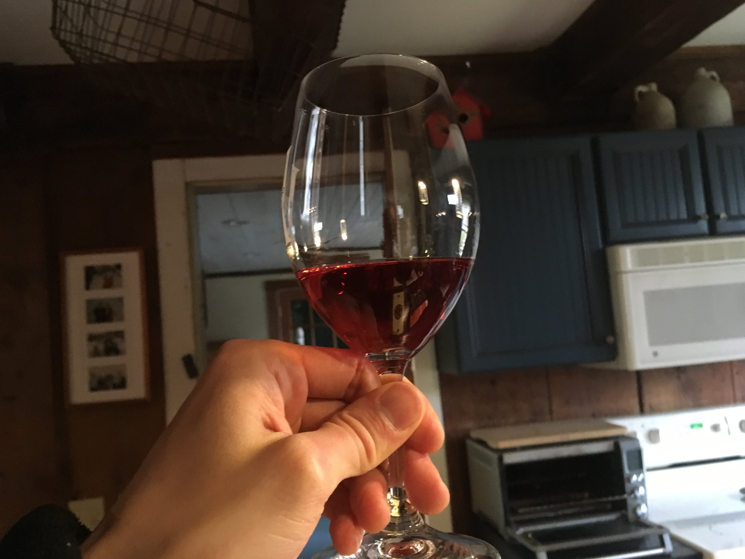 Sam tries a glass of knotweed wine   Photo: Taylor Quimby