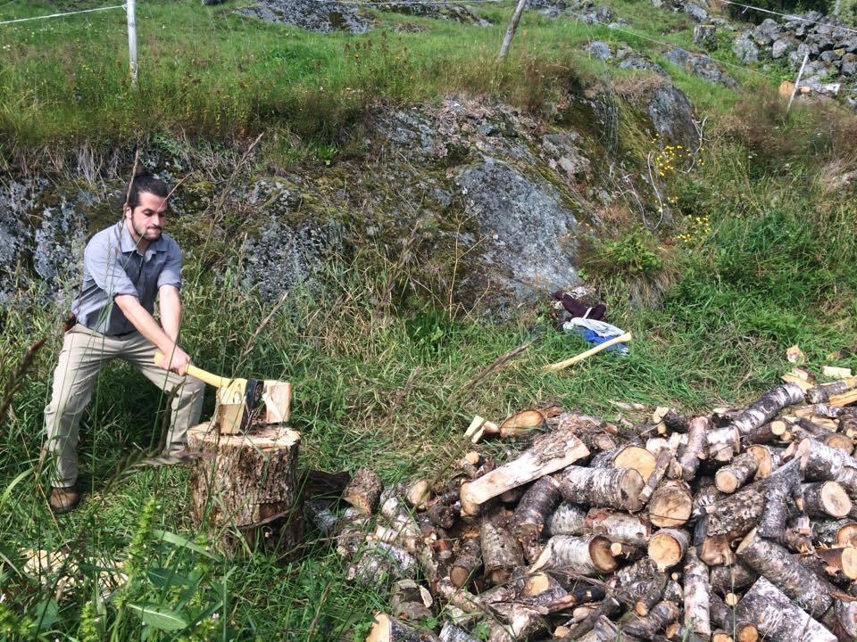 Jacob chopping wood.